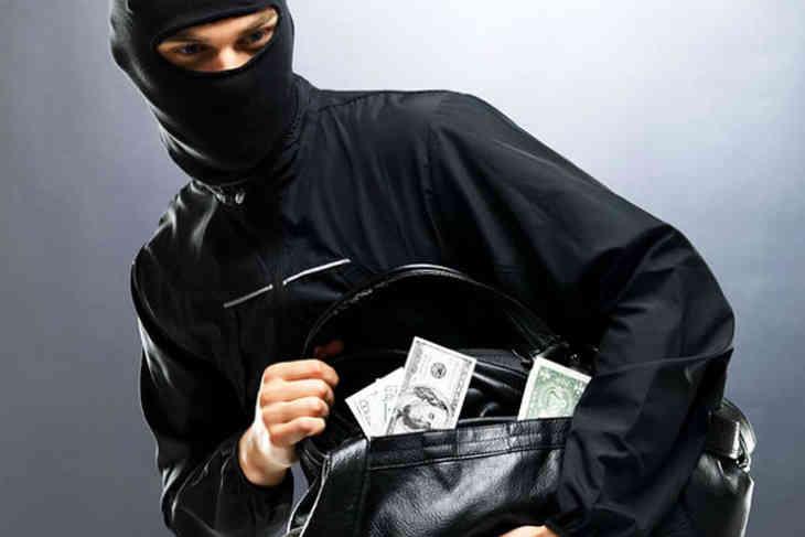 В Могилеве задержали мужчину за кражу более $100 тыс.