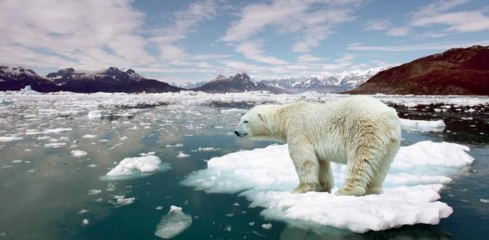 Ученые придумали, как спасти Землю от глобального потепления