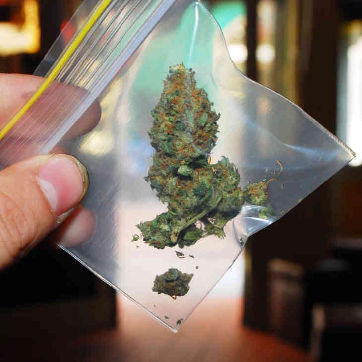 Как курение марихуаны влияет на сперму название цветка похожего на коноплю