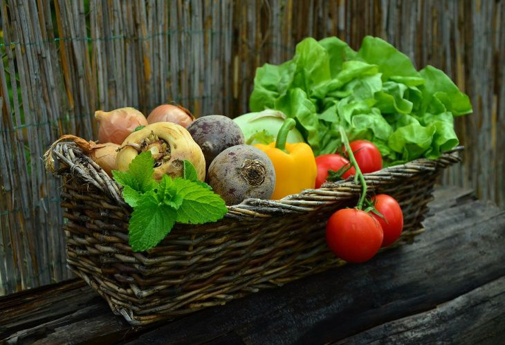 Scientists recommend strengthening children's immunity with fruits