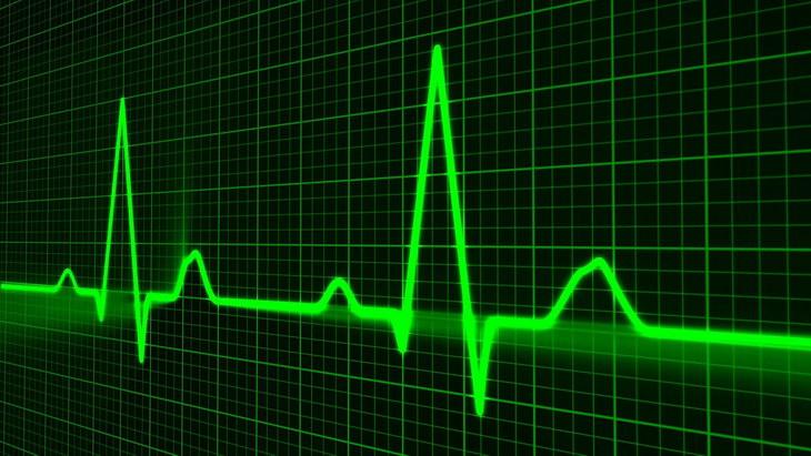 Ученые выяснили, как пульс влияет на продолжительность жизни