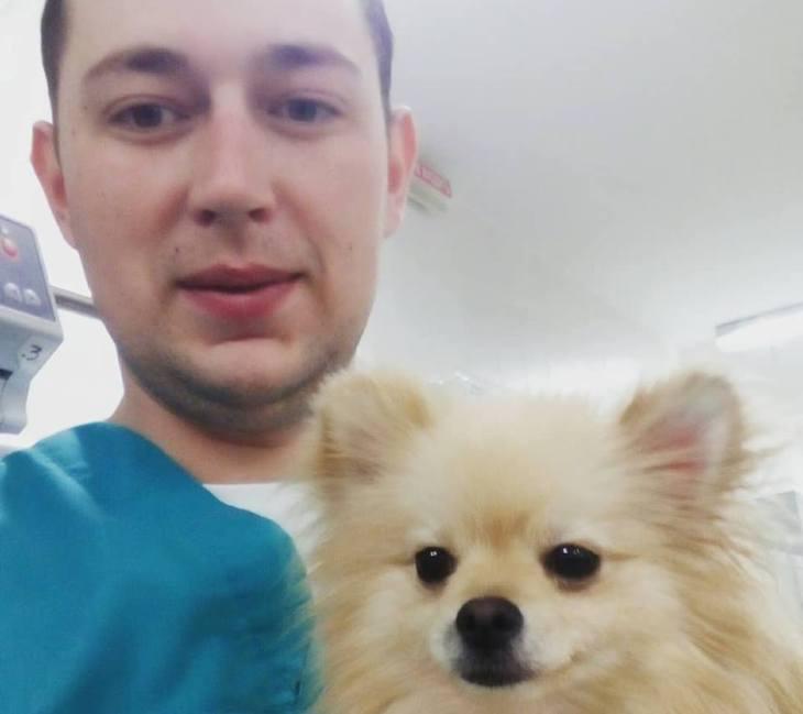 Ветеринар рассказал, сколько стоит вылечить собаку при укусе клеща