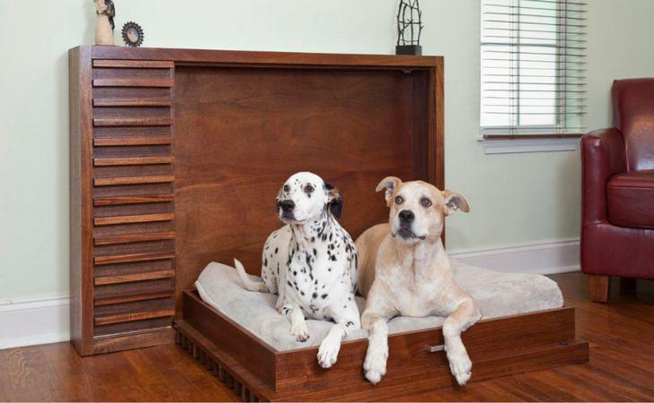 Опытные собаководы рассказывают, как правильно обустроить место для собаки в доме