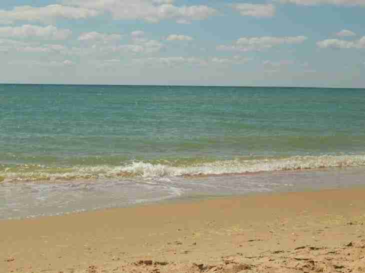Юноша пережил нападение акулы и собрался вернуться на пляж