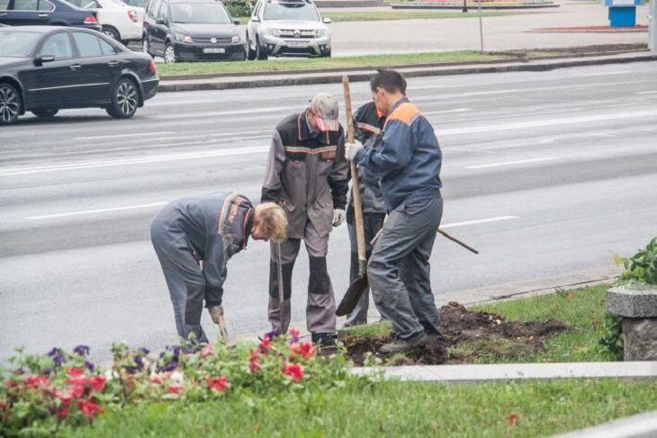 Новый формат: белорусам стало проще находить работу