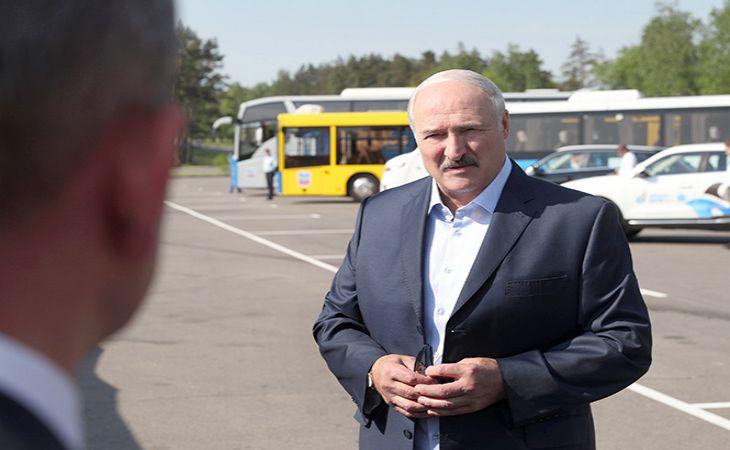 «За это ответят все». Лукашенко пообещал жесткие меры за массовый падеж скота