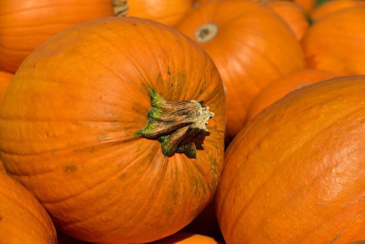Какой сегодня праздник: 22 октября 2019 года