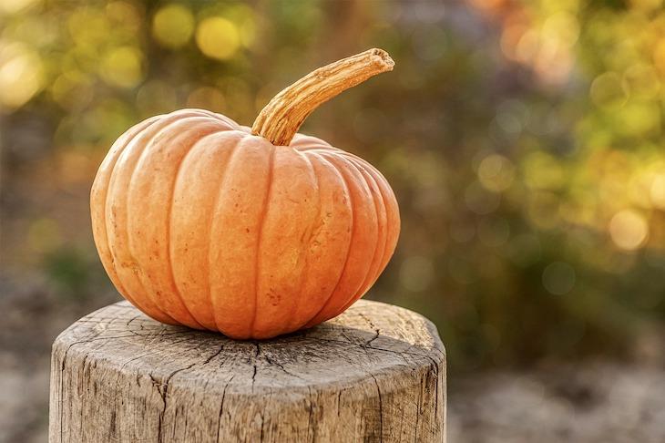Какой сегодня праздник: 28 октября 2019 года