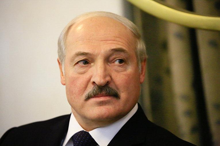 Лукашенко: уборочная должна быть завершена в Беларуси к 7 ноября