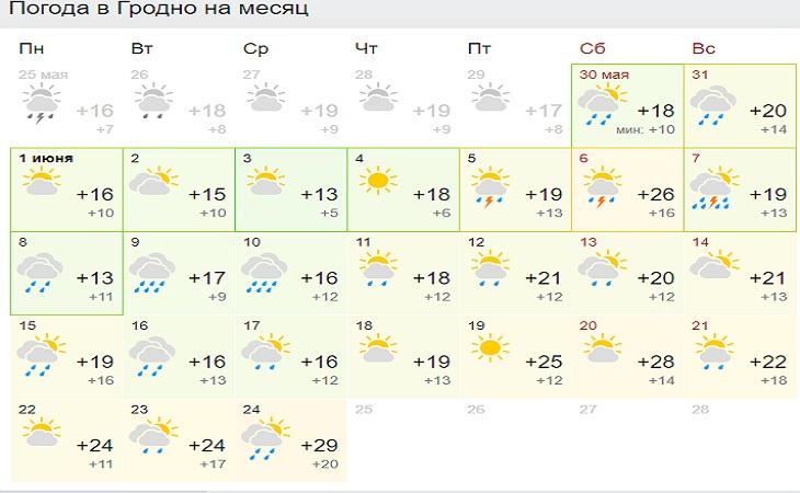 Такого июня белорусы точно не ждут: прогноз погоды на месяц