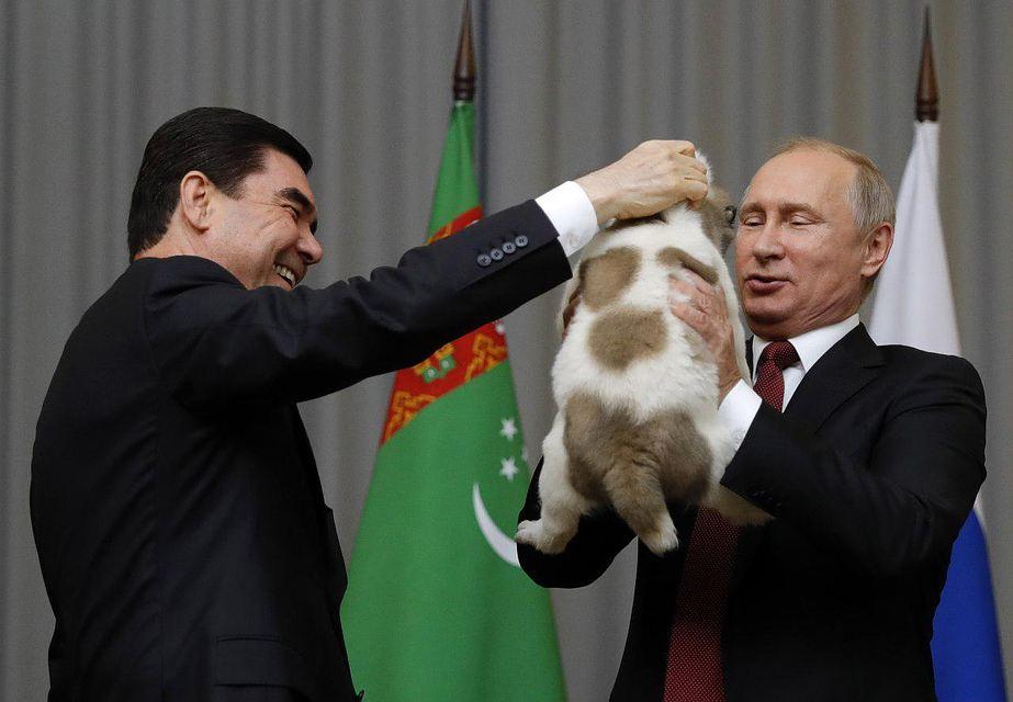 Собачья жизнь: от Путина сбежал последний друг