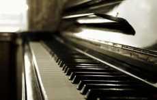 Медведь влез в дом и «сыграл» на фортепиано