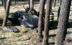 В Новополоцке BMW врезался в пень