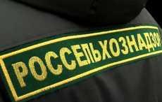 Россельхознадзор вновь ограничивает ввоз с белорусских предприятий