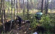 Возле Жодино Opel столкнулся с деревьями, его разорвало на части