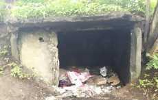 Следователи ищут очевидцев убийства мужчины в Витебске