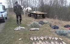 Незаконный улов рыбаков из Быхова оценили в Br8,7 тыс