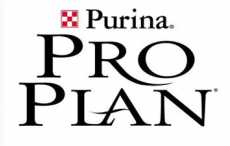 Соревнования по ездовому спорту «КУБОК Pro Plan 2013»
