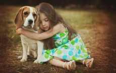Ученые выяснили, что собаки помогают детям бороться со стрессом