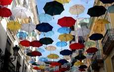 Купить сумки, рюкзаки, зонты, а также другие вещи и аксессуары по выгодной цене в РБ