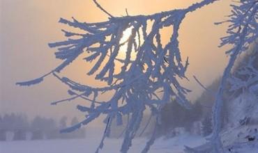 Температура на выходных в Беларуси была на 5-10 градусов ниже нормы