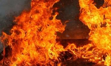 В Витебске снова обнаружили труп в сгоревшем сарае
